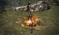 Test Dragon's Dogma