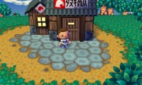 Test Animal Crossing Let's Go to the City
