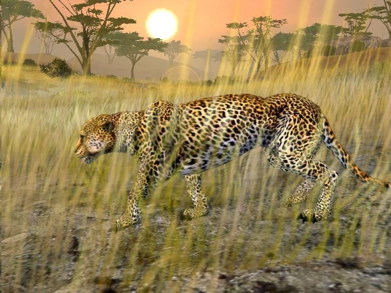 Cabela african safari 2017 pc iso download