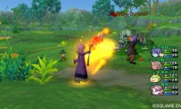 Dragon Quest 10 : des images Wii