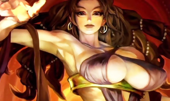 Dragon's Crown Pro : trailer de gameplay de la version 4K