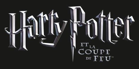 Harry potter et la coupe de feu - Harry potter et la coupe de feu en streaming ...