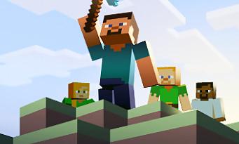 Minecraft (PS Vita) : un trailer au Tokyo Game Show 2014