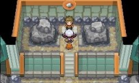 Test Pokémon Version Or HeartGold