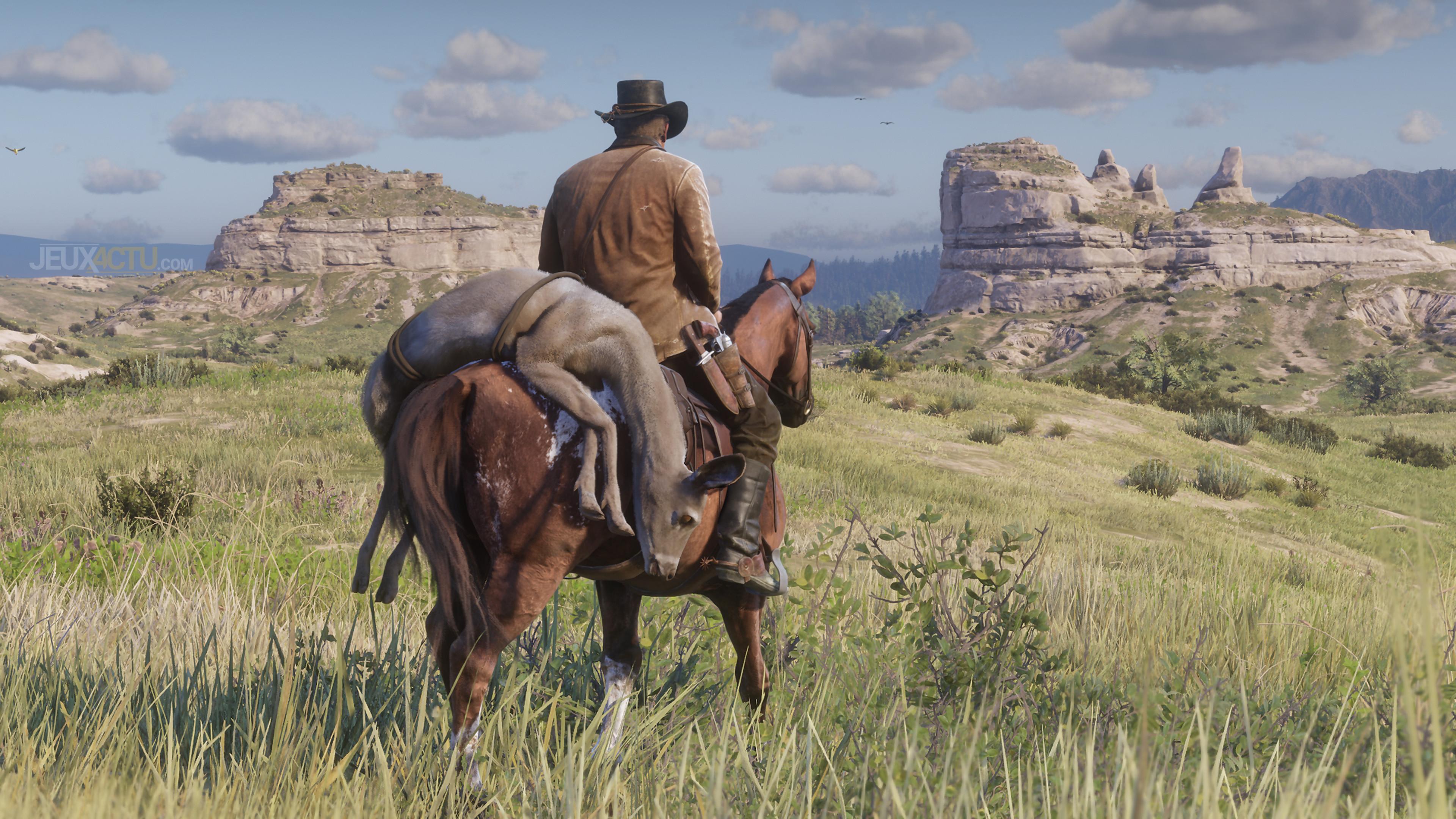 Red Dead Redemption 2 Exotische Gegenstände