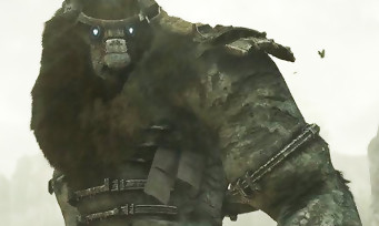 E3 2017 : trailer de Shadow of the Colossus sur PS4