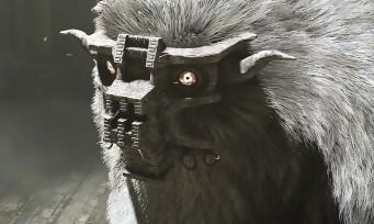 Shadow of the Colossus : un trailer d'une beauté incroyable sur PS4