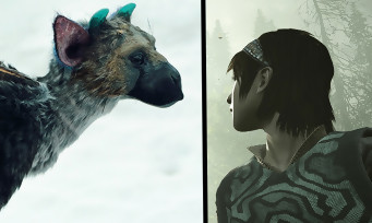 "Shadow of the Colossus : comment trouver le Easter Egg ""Last Guardian"""