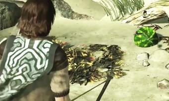 Shadow of the Colossus : l'astuce vidéo du easter egg de ICO