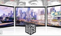 Test Sleeping Dogs