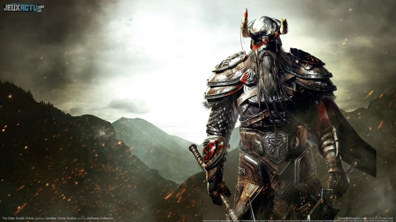 [PC] The Elder Scrolls Online Beta  The-elder-scrolls-online-4ff6c358dbf9f