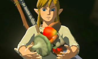 Zelda Breath of the Wild : tous les cheat codes et les recettes du jeu