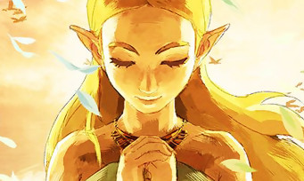 Zelda Breath of the Wild : il finit le jeu en 65 minutes !