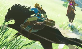 Zelda Breath of the Wild : la mise à jour 1.1.2. est bien mystérieuse...