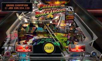 the-pinball-arcade-53106c29d5065.jpg