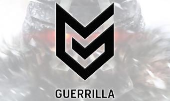 Guerrilla Games : du multijoueur au programme, Killzone de retour ?