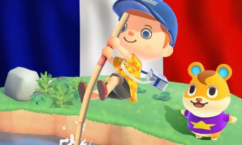 Charts France : les ventes Animal Crossing New Horizon en France