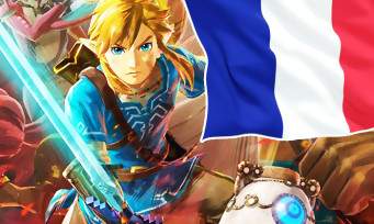 Charts France : Hyrule Warriors en tête devant Call of Duty