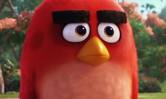 Angry Birds The Movie : voici le trailer du film d'animation
