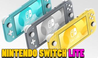 Switch Lite : les développeurs restent concentrés sur la version originale