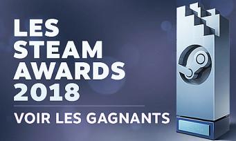 Steam Awards : découvrez les lauréats de l'édition 2018. Il y a des surprises !