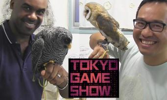 Tokyo Game Show 2016 : on vous fait visiter un bar à hiboux !