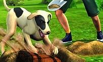 Les Sims 3 Animaux et Compagnie