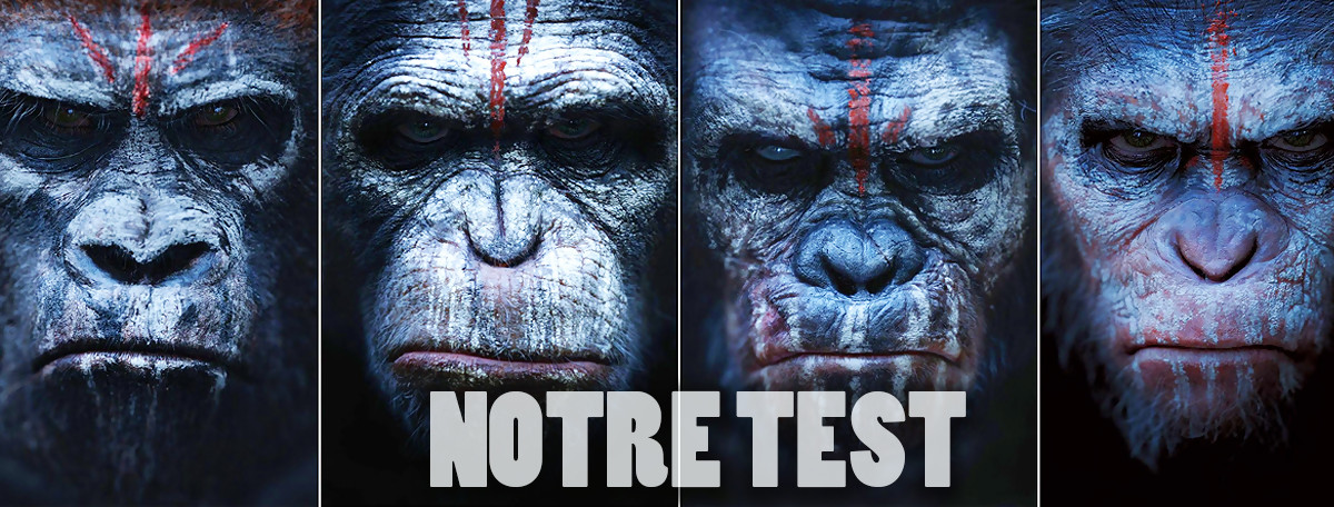Test Crisis on the Planet of the Apes : encore un jeu PS VR anecdotique
