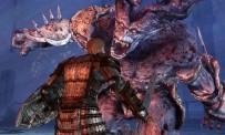 Dragon Age : Origins - Sloth Fight