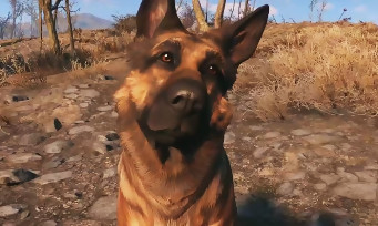 Fallout 4 : gameplay trailer qui parle des compagnons