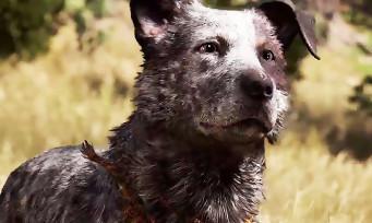 Far Cry 5 : trailer de gameplay des différents héros du jeu