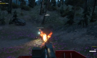 Far Cry : New Dawn