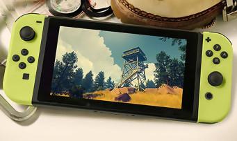Firewatch : le très chouette jeu de Campo Santo arrive enfin sur Switch