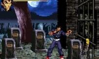 Gekido Advance : Kintaro's Revenge