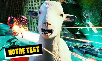 Test Goat of Duty : le FPS qui va vous rendre chèvre !