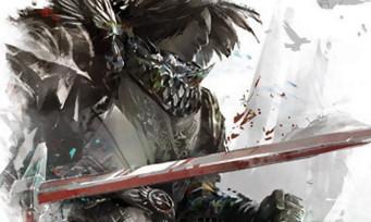 Guild Wars 2 : trailer de la mise à jour d'Hiver 2016