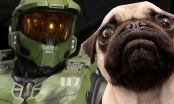 Halo Infinite : des chiens pour faire les bruitages des aliens !