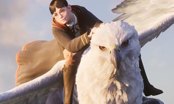 Hogwarts Legacy : on pourra créer un perso transgenre dans le Harry Potter open world, les explications