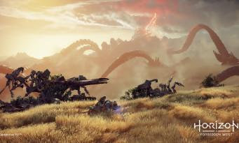 Horizon : Forbidden West