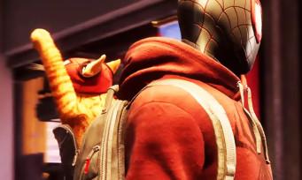 Spider-Man Miles Morales : du gameplay avec Spider-Cat
