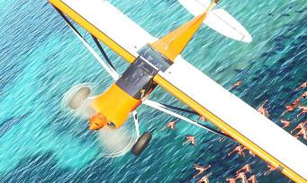 Microsoft Flight Simulator : l'Alpha ouvre bientôt, voici comment y avoir accès !