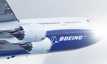 Microsoft Flight Simulator : du gameplay en vol aux instruments