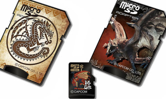 Monster Hunter : des cartes microSD aux couleurs de la série !