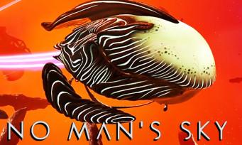 No Man's Sky : les vaisseaux organiques arrivent, la classe interplanétaire