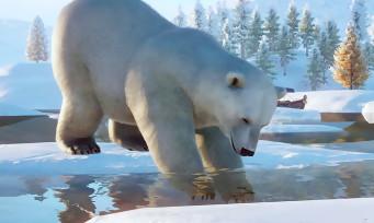 Planet Zoo : le pack Arctique est disponible, voilà le trailer de lancement