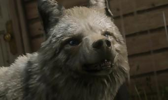 Red Dead Online : le coyote laiteux légendaire fait son apparition