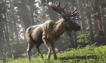 Red Dead Online : l'orignal à bois rougeâtres légendaire entre en scène