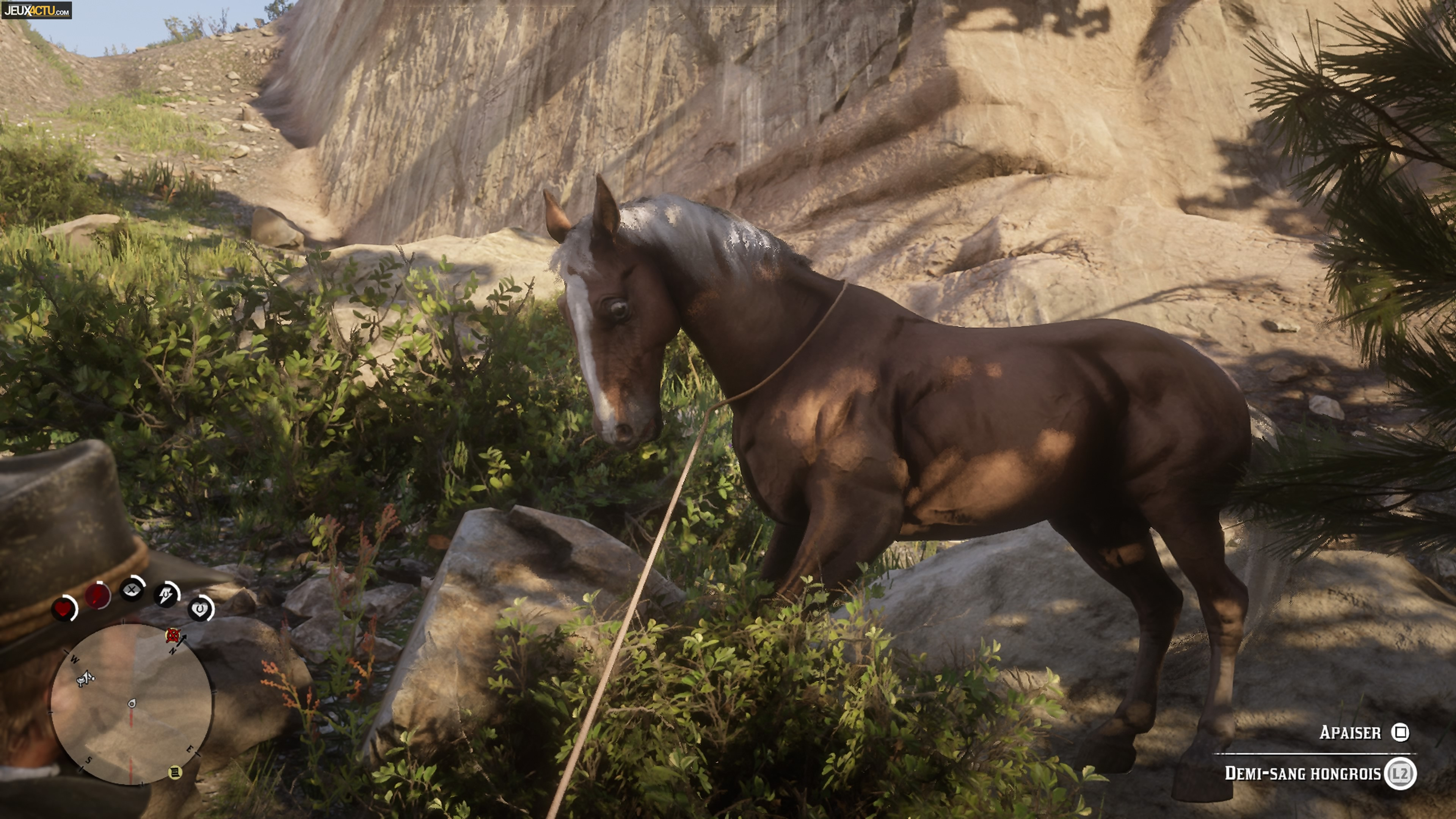 Test Red Dead Redemption 2 Quand Rockstar Donne Une Leçon