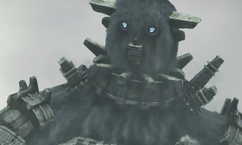 Shadow of the Colossus PS4 : Fumito Ueda a donné des conseils à Sony