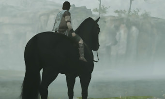"Shadow of the Colossus : les plus beaux clichés du mode ""Photo"""